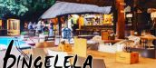 BINGELELA RESTAURANT, PIZZERIA AND ACCOMMODATION